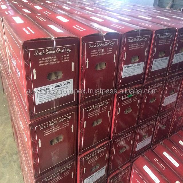 Lab-as White Chat Itlog Exporters Gikan sa Tamilnadu / Chennai / Namakkal
