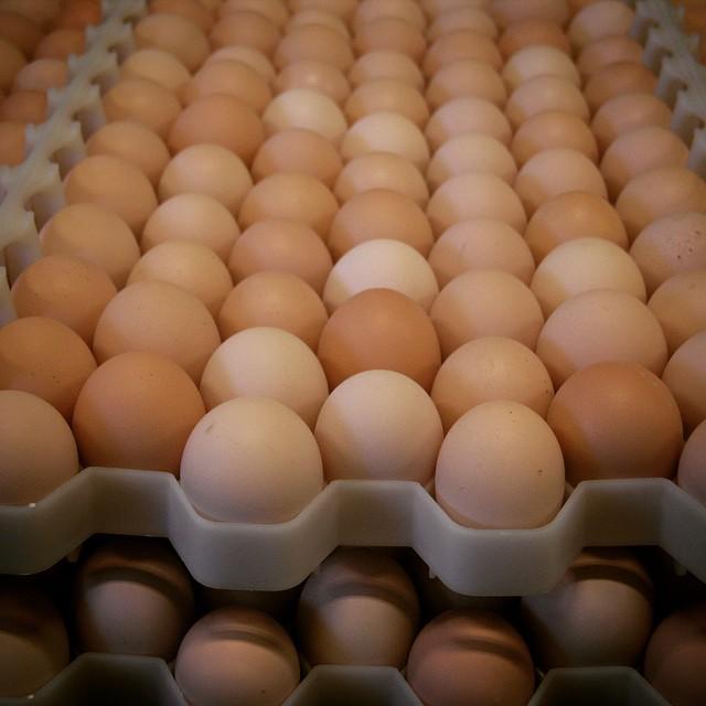 Горячая цена свежие настольные яйца в Украине