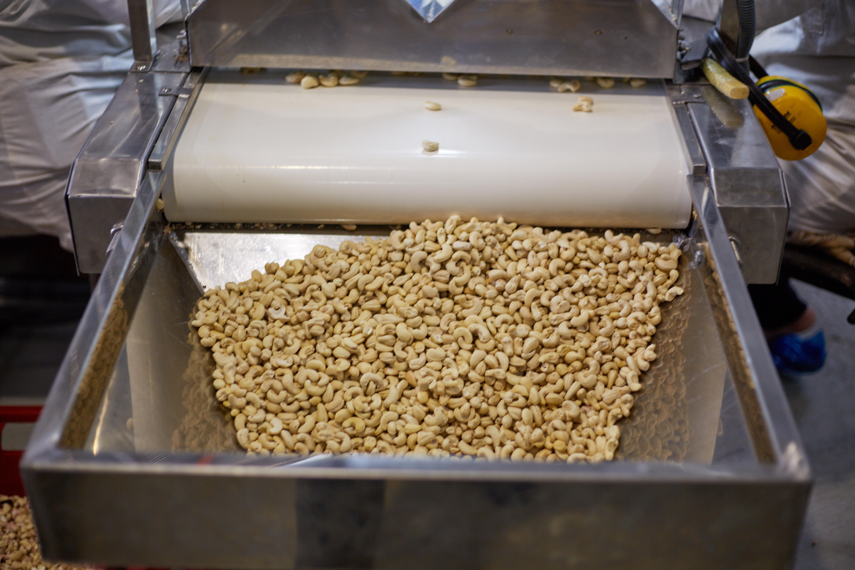 Экологичное натуральное ореховое масло кешью