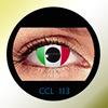 CCL13