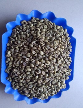 VIETNAM ROBUSTA GREEN COFFEE BEANS SCR#18
