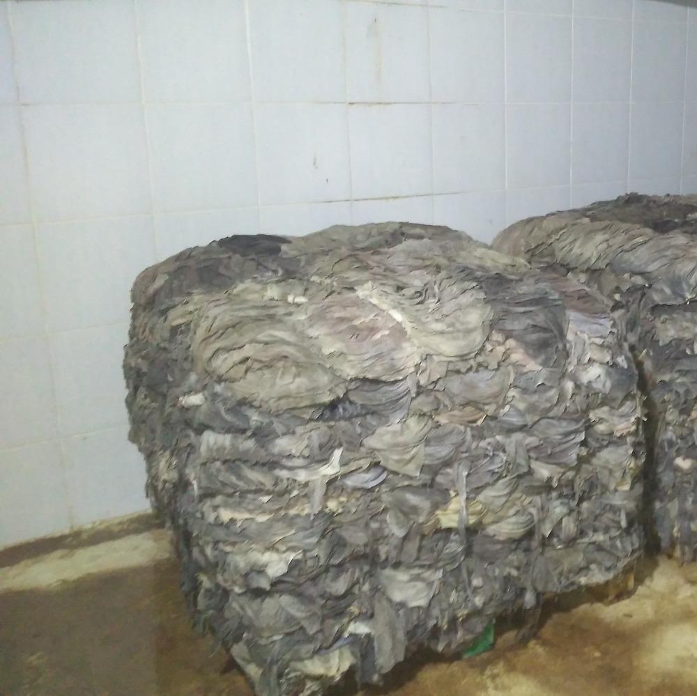 Dry Frozen Salted Beef Omasum