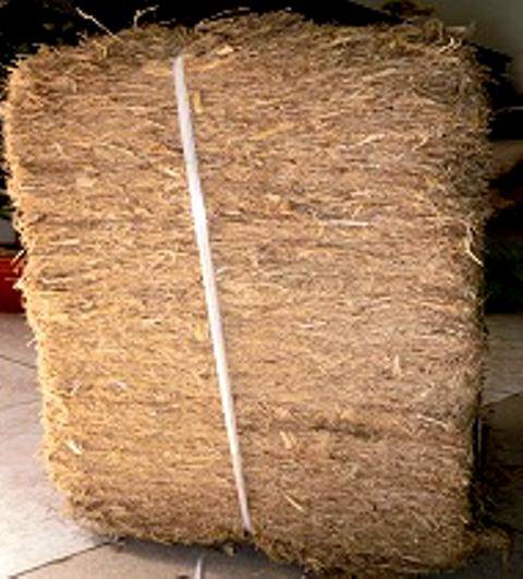 Многоразовое топливо из натурального материала для сахарных мельниц, сахарный тростник, слисса, продукция, целлюлоза, низкая цена