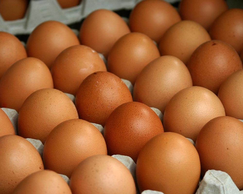 Fresh Table Eggs White / Brown