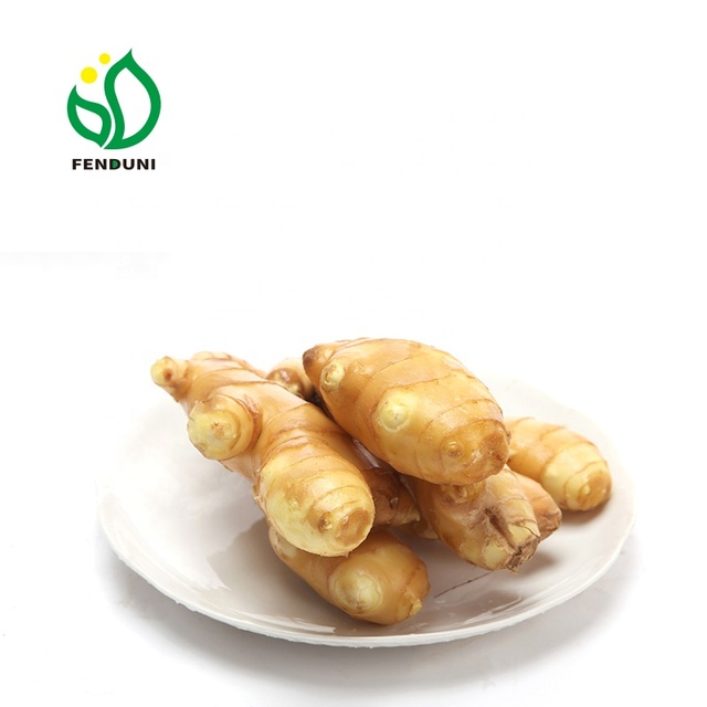 Fresh and Dry Ginger Specification ( UK market)