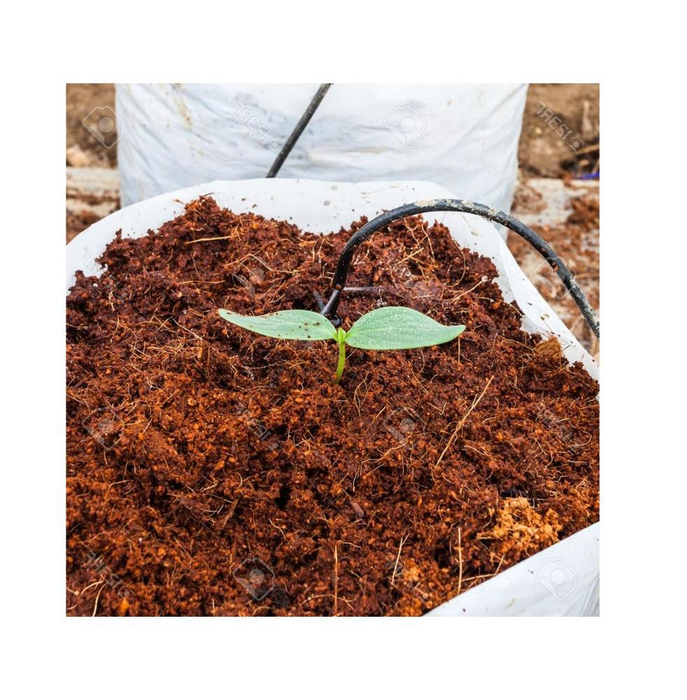 Высококачественный кокосовый торф из Вьетнама