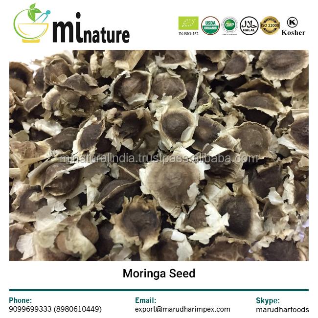 Семена Моринги олейферы/PKM1 семена Моринги + семена Барабанной палочки