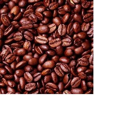 Какао бобы, сушеные какао бобы Crioll, какао бобы для продажи