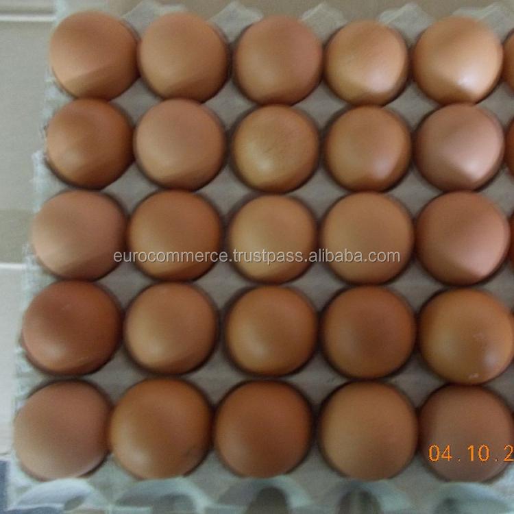 Свежие белые и коричневые куриные яйца из Украины