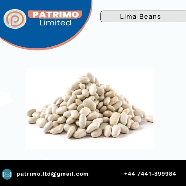 Premium Bulk selling supplier Lima Beans at Wholesale Price