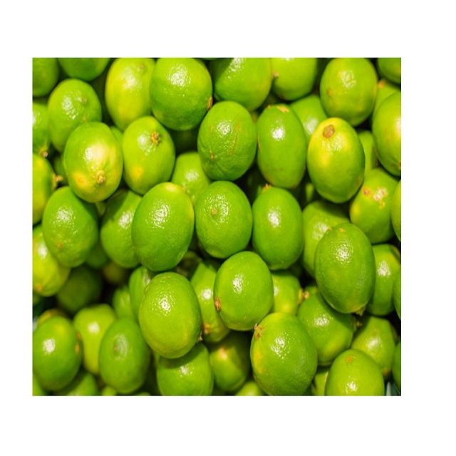 Wholesale Vietnam Fresh Seedless Lime High Quality 2019