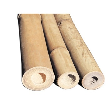 High Quality Bamboo Poles And Sticks For Construction Work and Home Decor (Lee Tran: +84987731263)