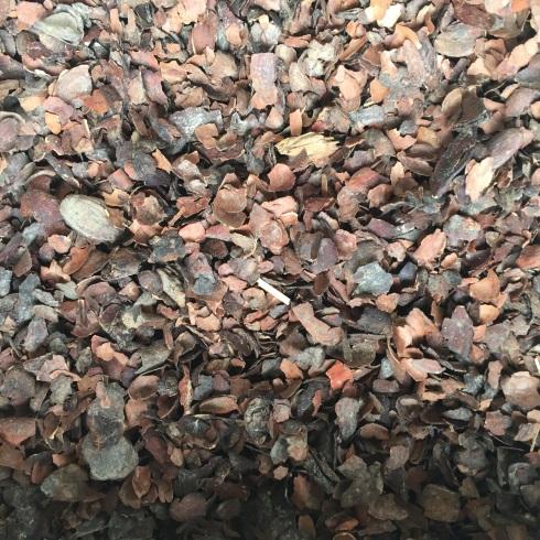 Оболочка какао бобов