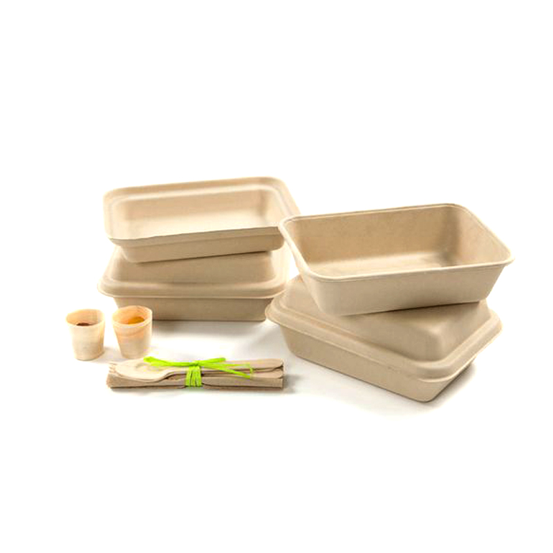 Wholesale Latest Design Manufacturer Custom Eco-Friendly Recyclable Sugarcane  Dry Press Molded Pulp Packaging
