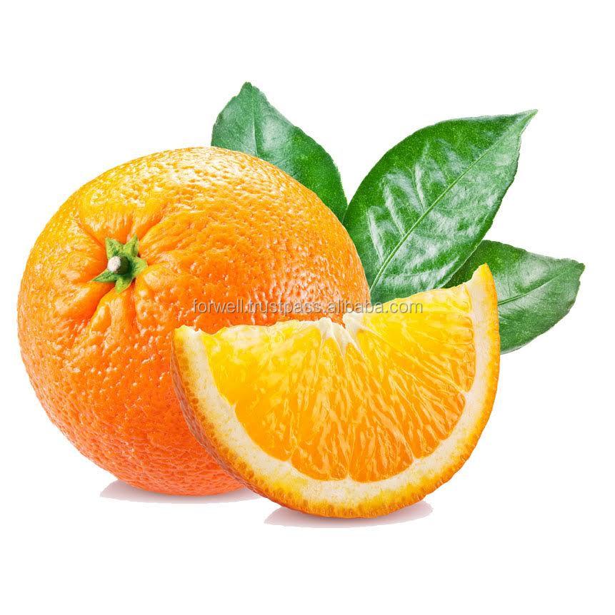 high quality fresh orange with best price