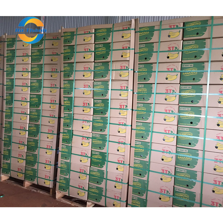 Top Selling Wholesale Manganese In Bananas Is Good For Your Skin Cavendish Bananas Price Fresh