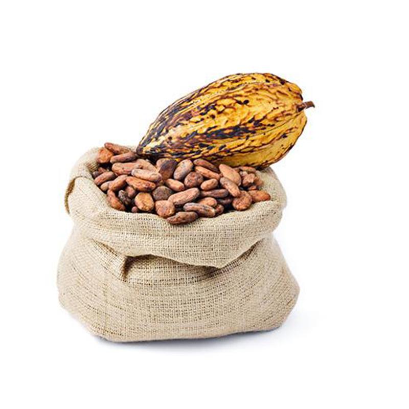 Качественные сушеные какао бобы/какао бобы из камеруна
