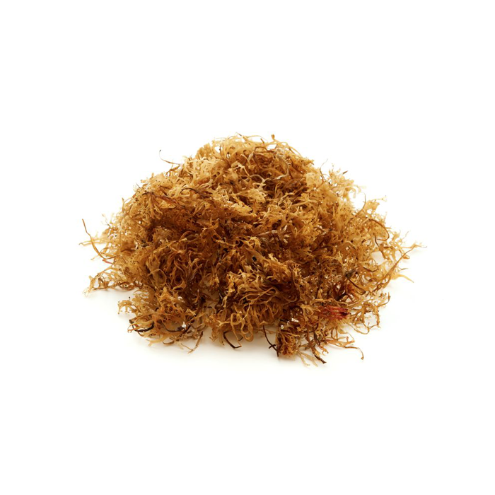 BEST PRICE OF DRIED SEA MOSS FROM VIETNAM/ Ms. May +84 904 183 651