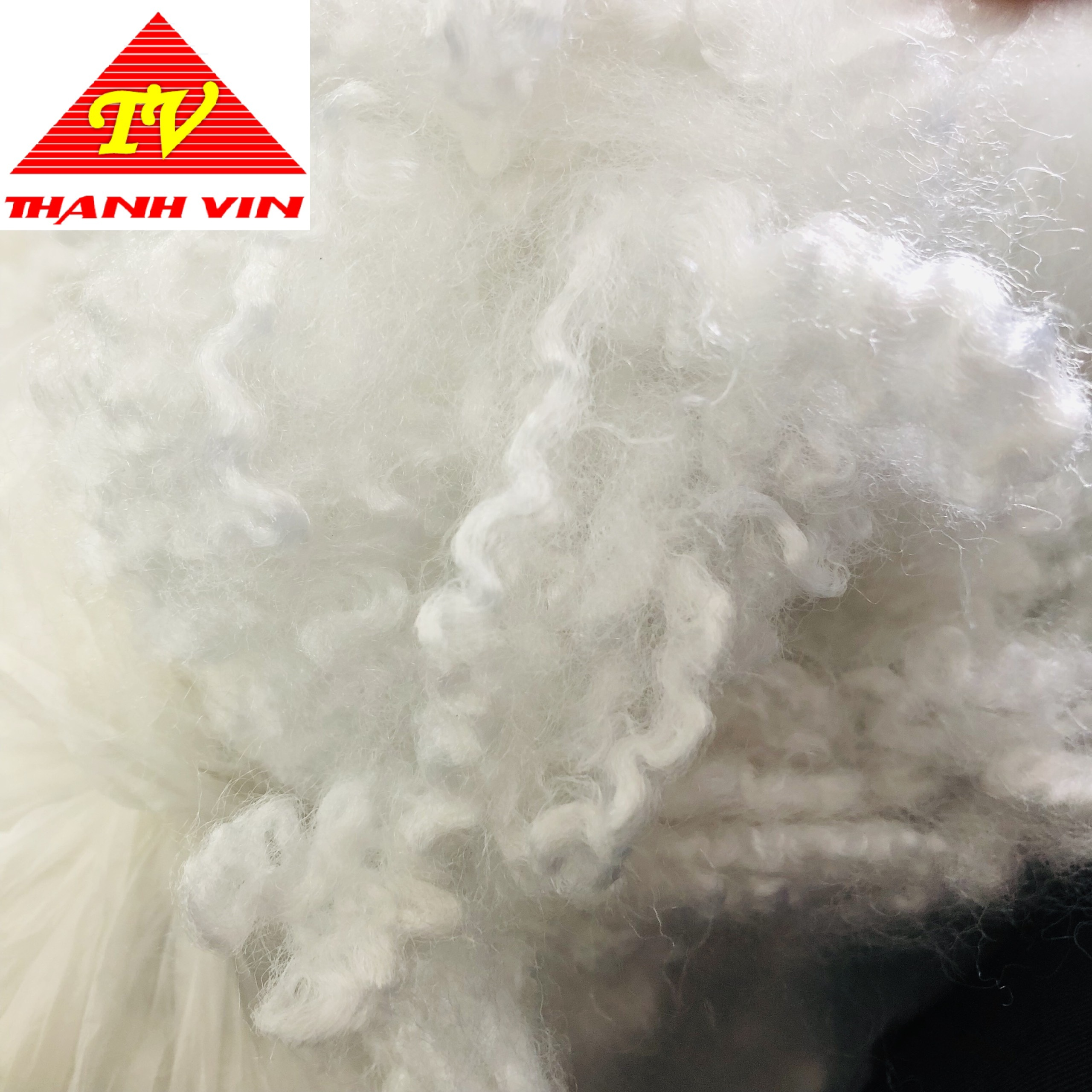 HCS 7d/15d x 64mm/32mm hollow conjugated siliconised polyester psf fiber for stuffing - Ms. Mira