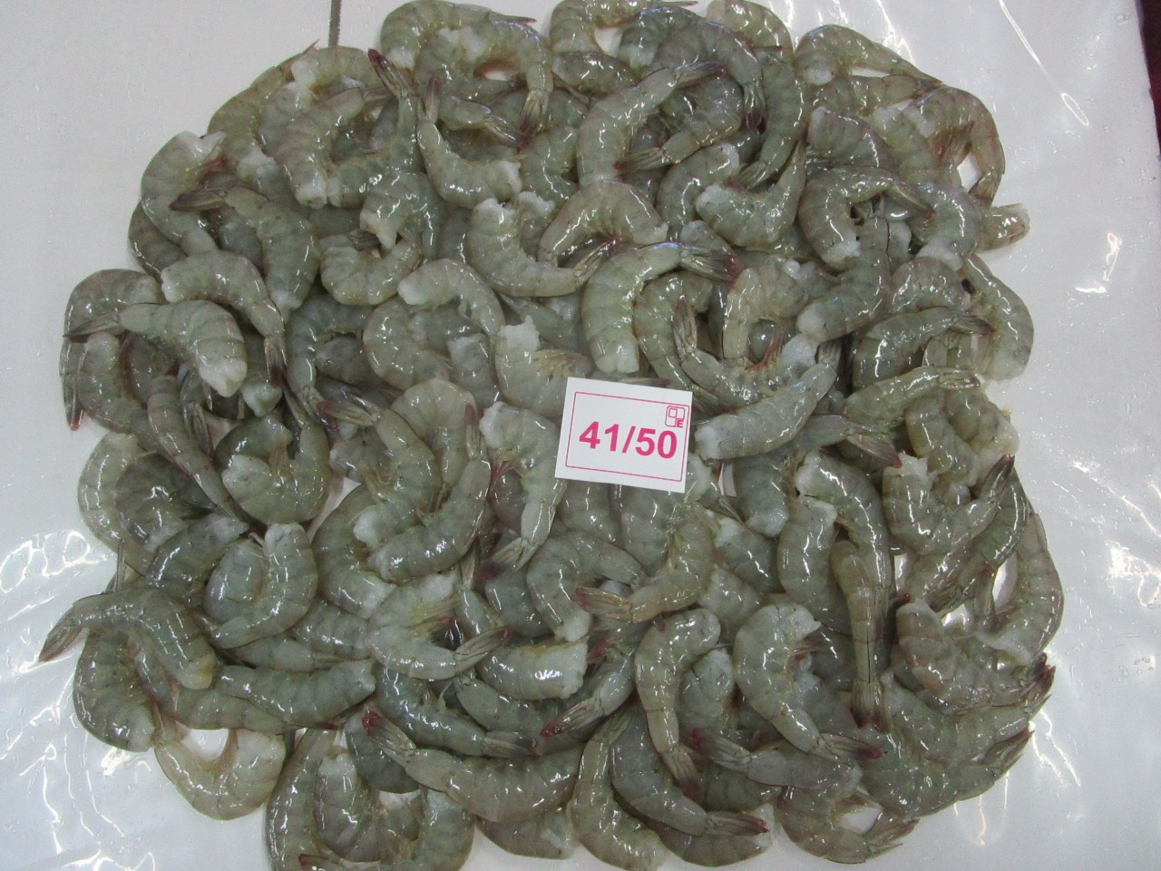 Frozen vannamei shrimps export best qulaity seafood supply India