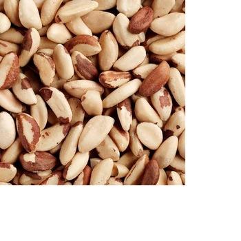 cashew seed bulk cashew nuts raw w240 supplier Pistachio Nuts / Roasted Pistachio Nuts / Sweet Pistachio