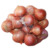Fresh red-white onion for sale from Vietnam