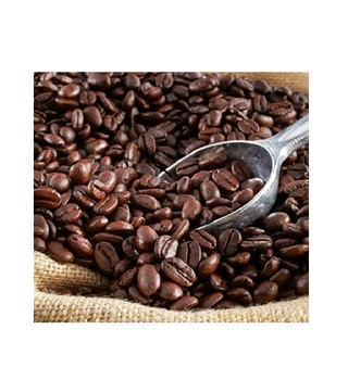 The most reasonable arabica coffee beans price for EU market