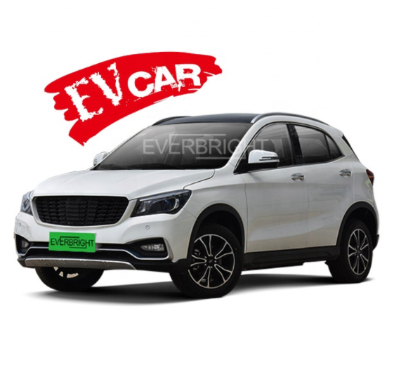 NEW ARRIVAL From Japan 4 Wheel 5 Seat Electric Car Cheap price