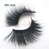MR-X10