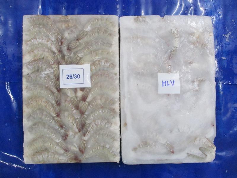 best wholesale shrimp export India